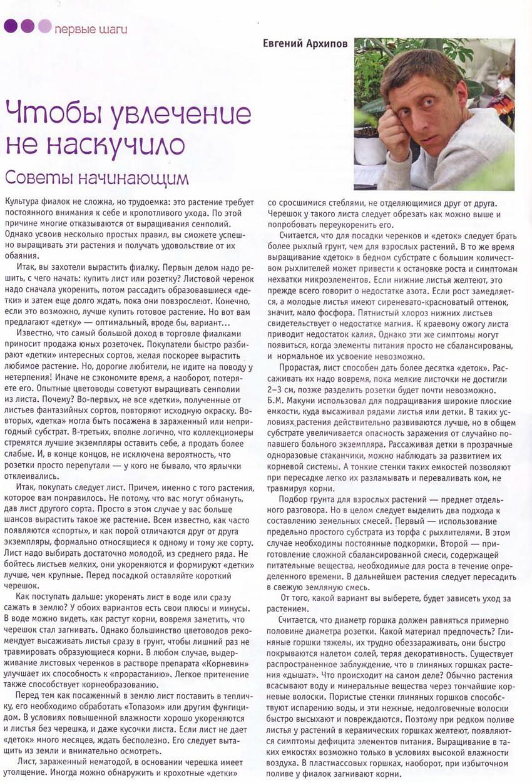 узамбарская фиалка или сенполия - Страница 2 5605.11